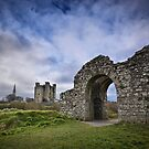 Sheeps Gate and Trim Castle by Michelle McMahon