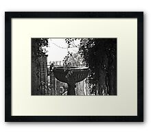 From the garden Framed Print