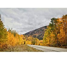 Fall in the Rockies #11 Photographic Print