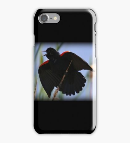 Batbird iPhone Case/Skin