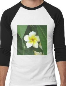 Plumeria Extreme Men's Baseball ¾ T-Shirt