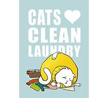 Cats love clean laundrey Photographic Print