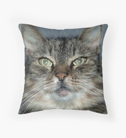 Mugshot Throw Pillow