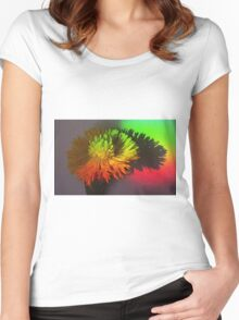 Spring Through A Rainbow Women's Fitted Scoop T-Shirt