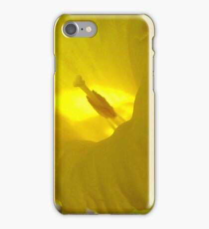 Spring Fanfare iPhone Case/Skin