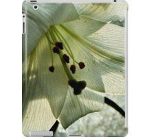 Leaf and Veins iPad Case/Skin