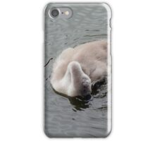 Itchy, Scratchy and Preen iPhone Case/Skin
