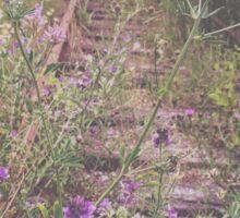 Wildflowers on Train Tracks Sticker