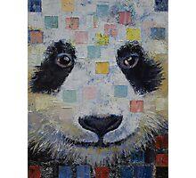 Panda Checkers Photographic Print