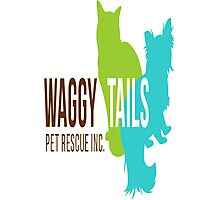 Waggy Tails Pet Rescue  Photographic Print