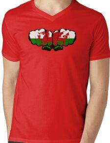 Wales! (Standard) Mens V-Neck T-Shirt