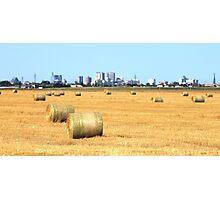 Hay! Look, it's Winnipeg! Photographic Print