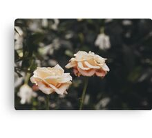 It Takes Two More Canvas Print
