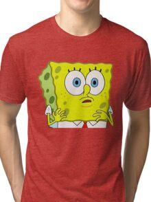 An Astounded Sponge Tri-blend T-Shirt