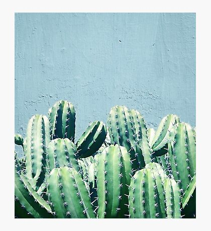 Cactus & Teal #redbubble #lifestyle Photographic Print