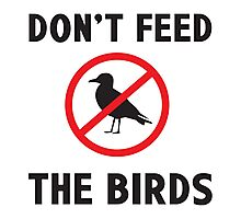 Dont Feed the Birds Photographic Print