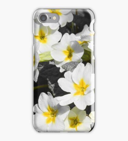 primrose Bush with white flowers iPhone Case/Skin
