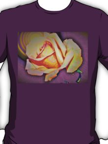 A rose in the sun T-Shirt