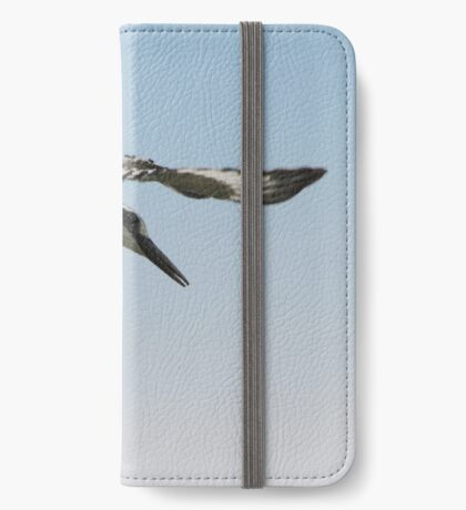 Pied kingfisher iPhone Wallet/Case/Skin