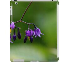 Climbing Nightshade II iPad Case/Skin
