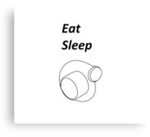 Eat Sleep Boost Canvas Print