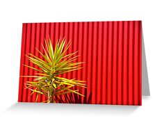 sharp contrast Greeting Card