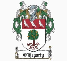 O'Hegarty Coat of Arms (Donegal) by coatsofarms