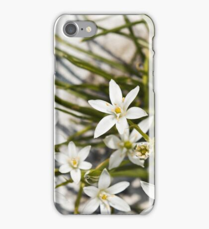 white flowers bloom  iPhone Case/Skin