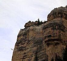 The Face Of Cedar Mountain by goldnzrule