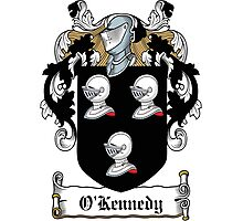 O'Kennedy Coat of Arms (Clare) Photographic Print