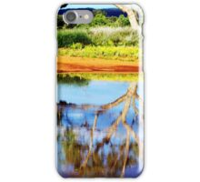 Desert Reflections iPhone Case/Skin