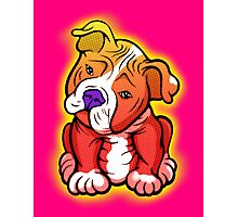 Tilted Head Pit Bull Pup Graphic Photographic Print