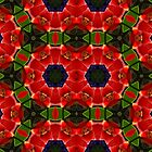 Kaleidoscope Geometry Pattern From Nature 44 by Kenneth Grzesik