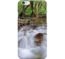 Rainforest cascades iPhone Case/Skin
