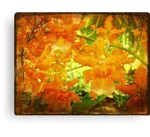Orange Orchid Tangle Canvas Print