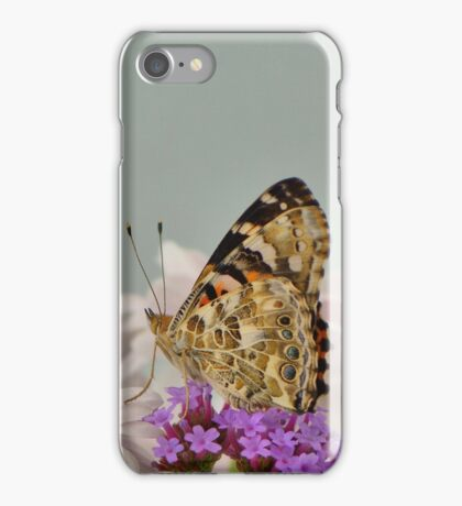 Painted lady butterfly on flowers iPhone Case/Skin