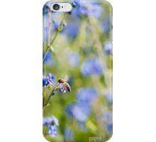 Wollongong Botanic Gardens iPhone Case/Skin