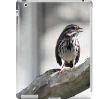A Restful Chirp iPad Case/Skin
