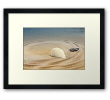 Treasures of the sea Framed Print