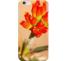 Red Bells iPhone Case/Skin