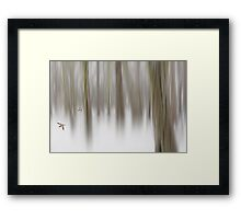 Winter interlude Framed Print