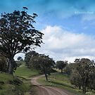 A Country Road by garts