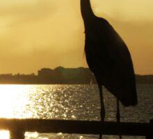King of the Pier ~ Heron Sticker