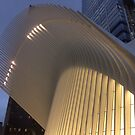 World Trade Center Transit Hub Oculus, New York City by lenspiro
