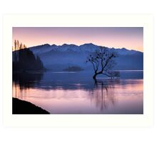 That Wanaka Tree - New Zealand Art Print