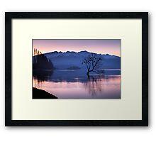 That Wanaka Tree - New Zealand Framed Print