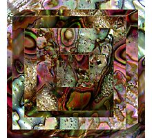 Abalone Abstract Photographic Print