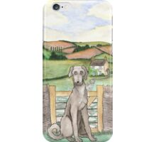 Irish Wolfhound in the Cotswolds iPhone Case/Skin