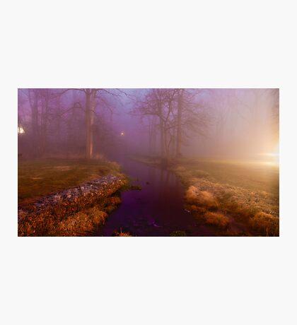 Night Night Photographic Print