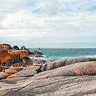 Cosy Corner - Bay of Fires - Tasmania by AnthonyDavey